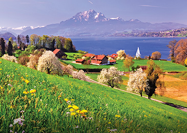 Switzerland Guided Tours